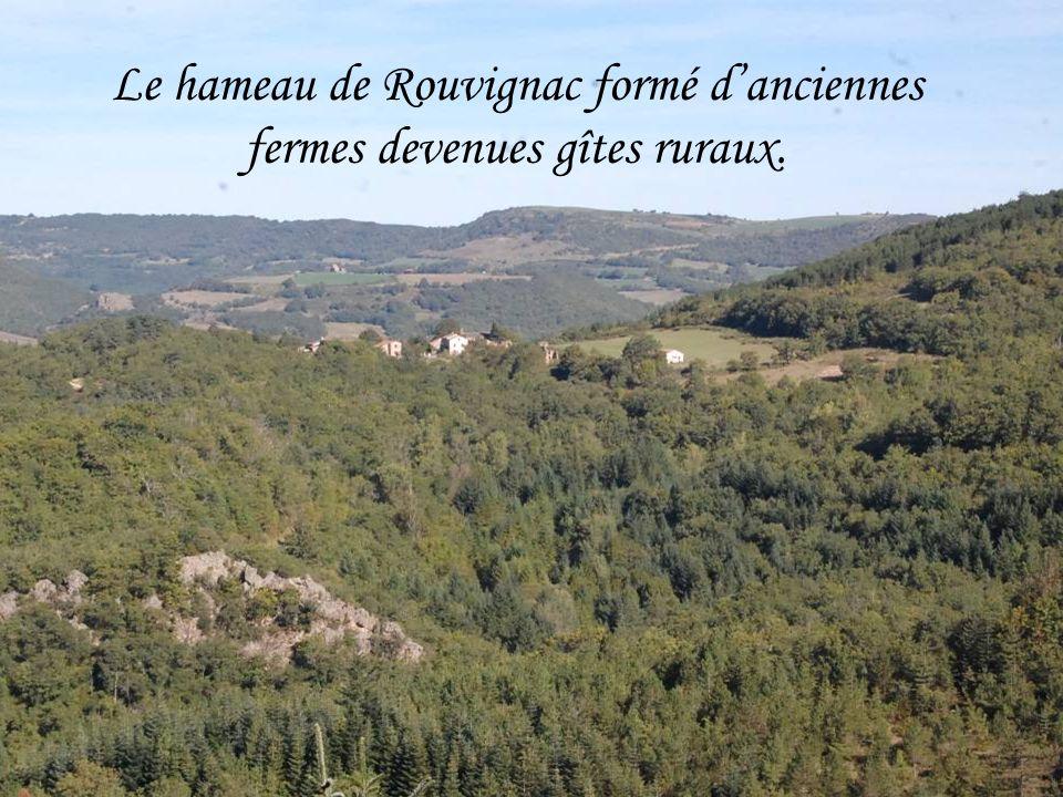 Le hameau de Rouvignac formé danciennes fermes devenues gîtes ruraux.