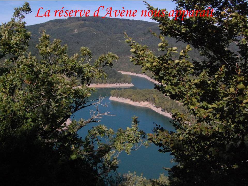 Village dAvène