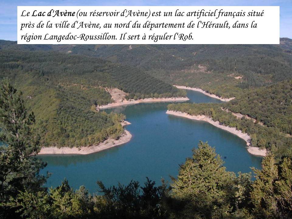 Le Lac d Avène (ou réservoir d Avène) est un lac artificiel français situé près de la ville dAvène, au nord du département de lHérault, dans la région Langedoc-Roussillon.
