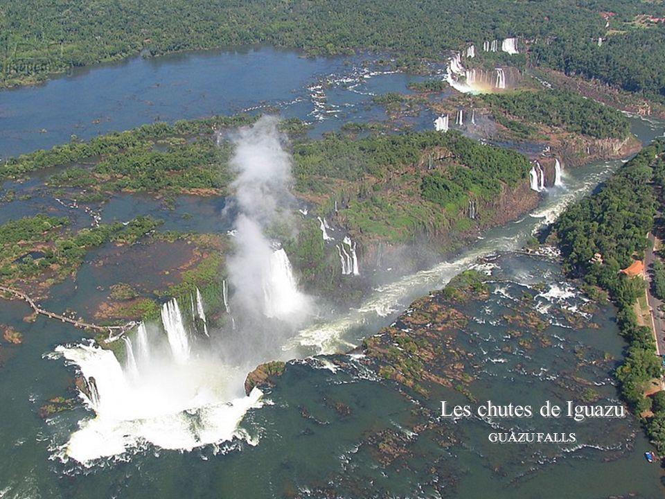 Les chutes de Iguaza Iguazu falls