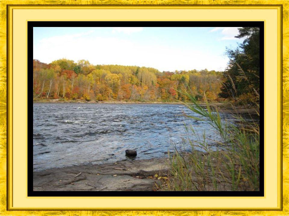 Une belle façon de se ressourcer dans la nature du parc de la rivière Batiscan,