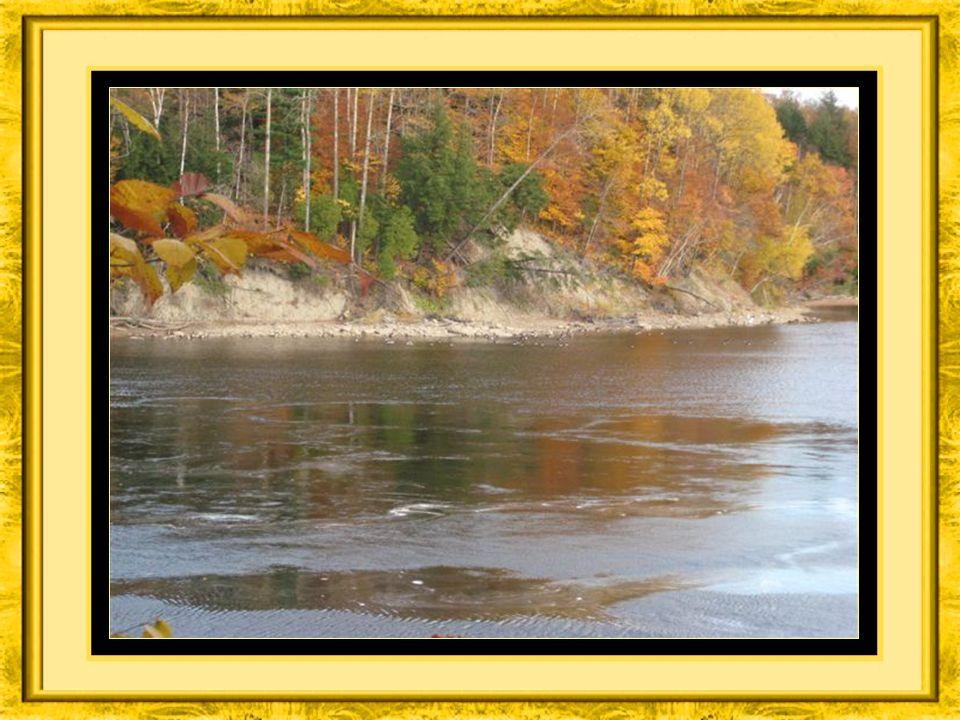 Entendez les bernaches vous parlez au creux de la rivière Batiscan,