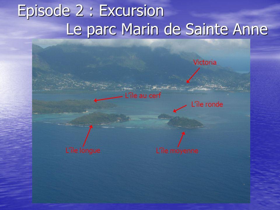 Episode 2 : Excursion Le parc Marin de Sainte Anne Lîle moyenne Lîle longue Lîle ronde Lîle au cerf Victoria