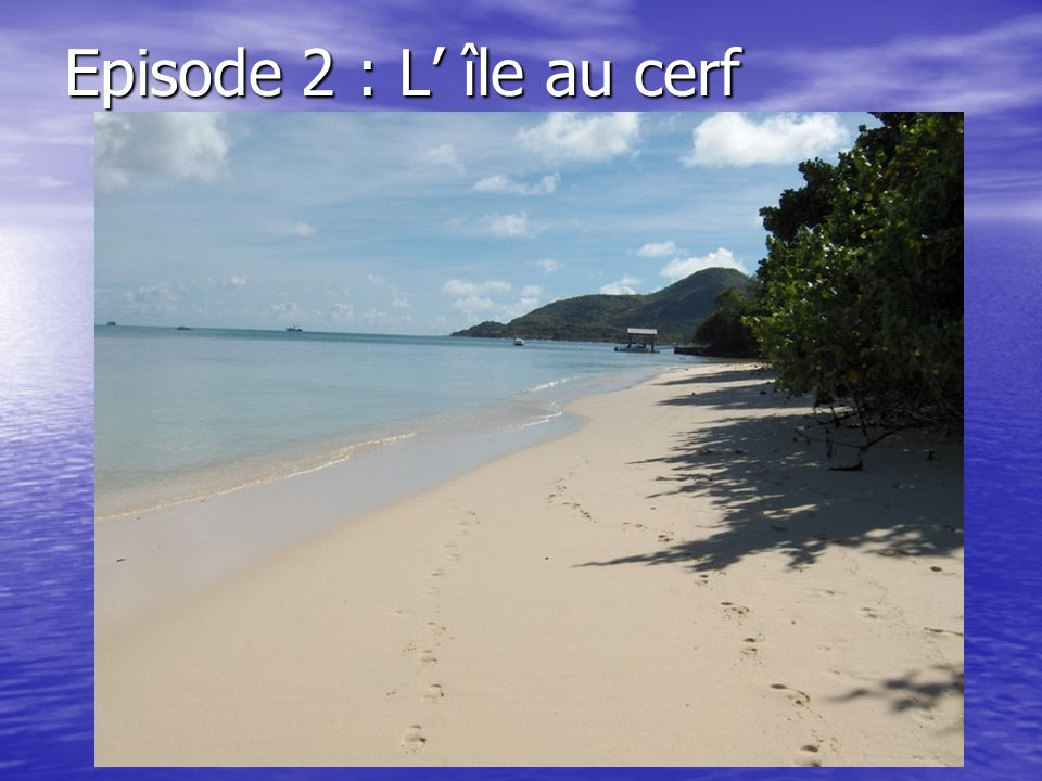 Episode 2 : L île au cerf