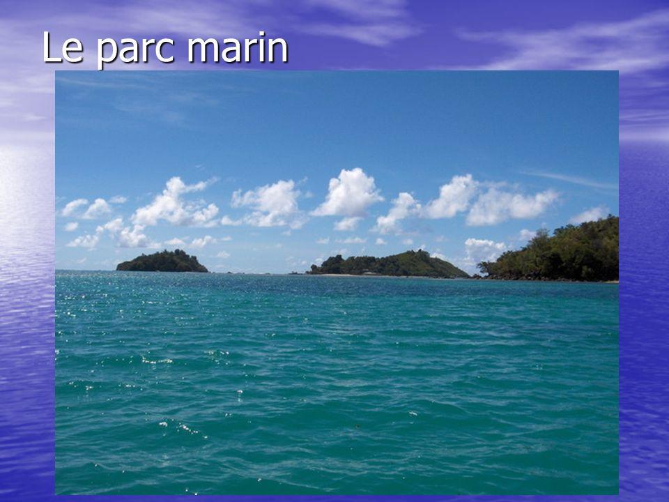 Le parc marin