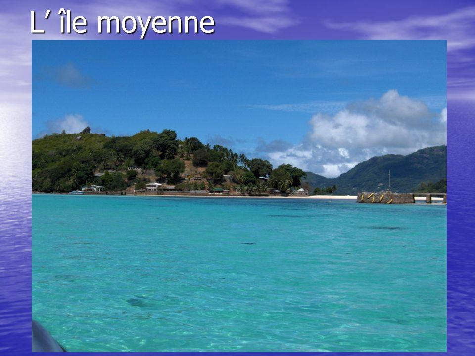 L île moyenne