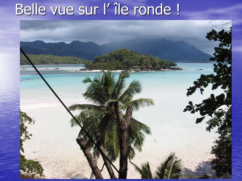 Belle vue sur l île ronde !