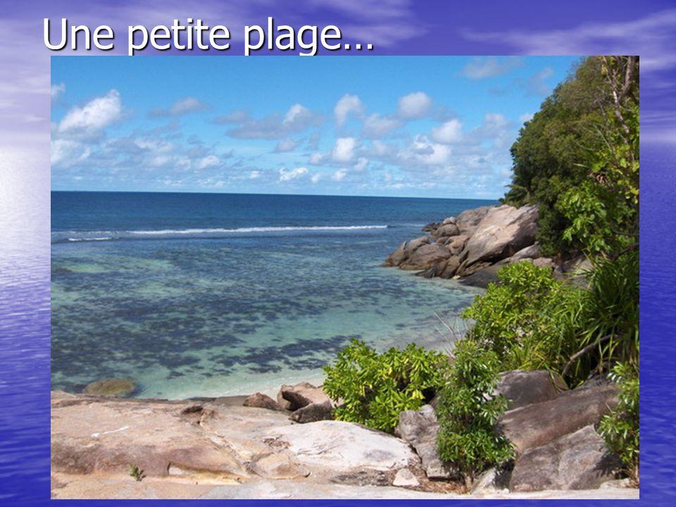 Une petite plage…