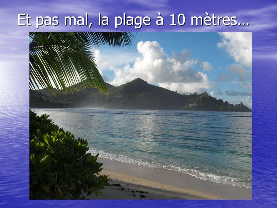 Et pas mal, la plage à 10 mètres…