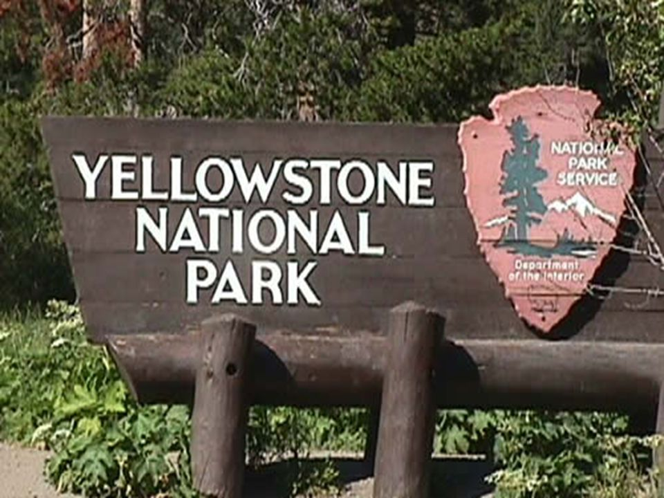LE YELLEOWSTONE NATIONAL PARK WYOMING, USA