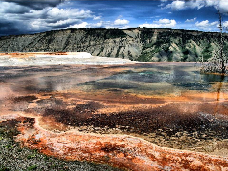 L'activité sismique est suivie de près par les autorités du parc de Yellowstone. Les scientifiques mesurent en permanence les mouvements du plateau, q