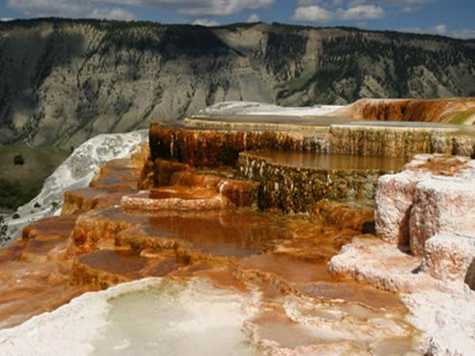 Les Mammoth Hot Springs constituent l'une des grandes curiosités du parc. Il s'agit de montagnes de calcaire qui se sont formées au fil des millénaire