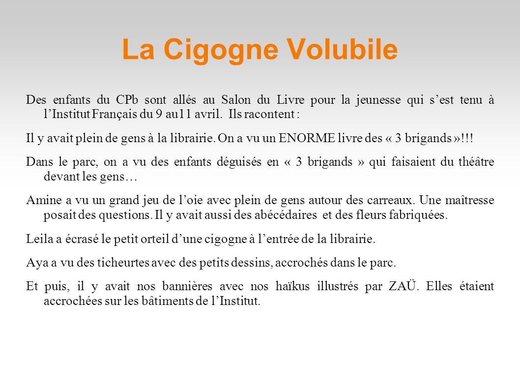 La Cigogne Volubile Des enfants du CPb sont allés au Salon du Livre pour la jeunesse qui sest tenu à lInstitut Français du 9 au11 avril. Ils racontent