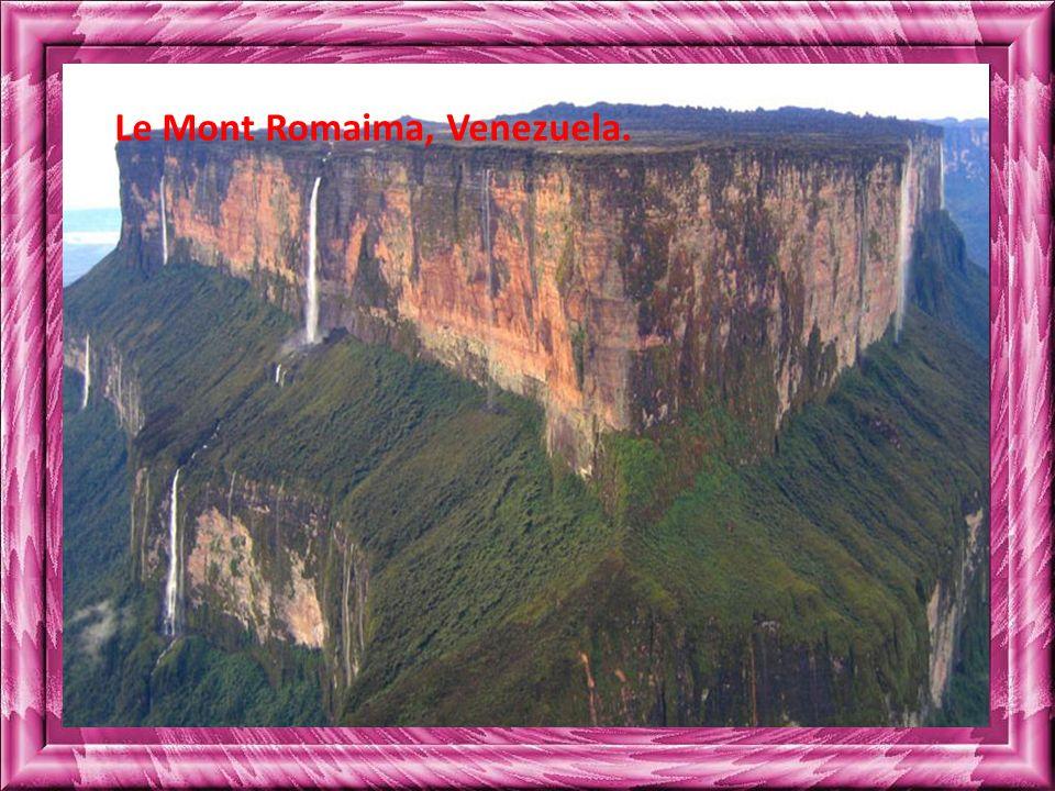 Le Mont Romaima, Venezuela.