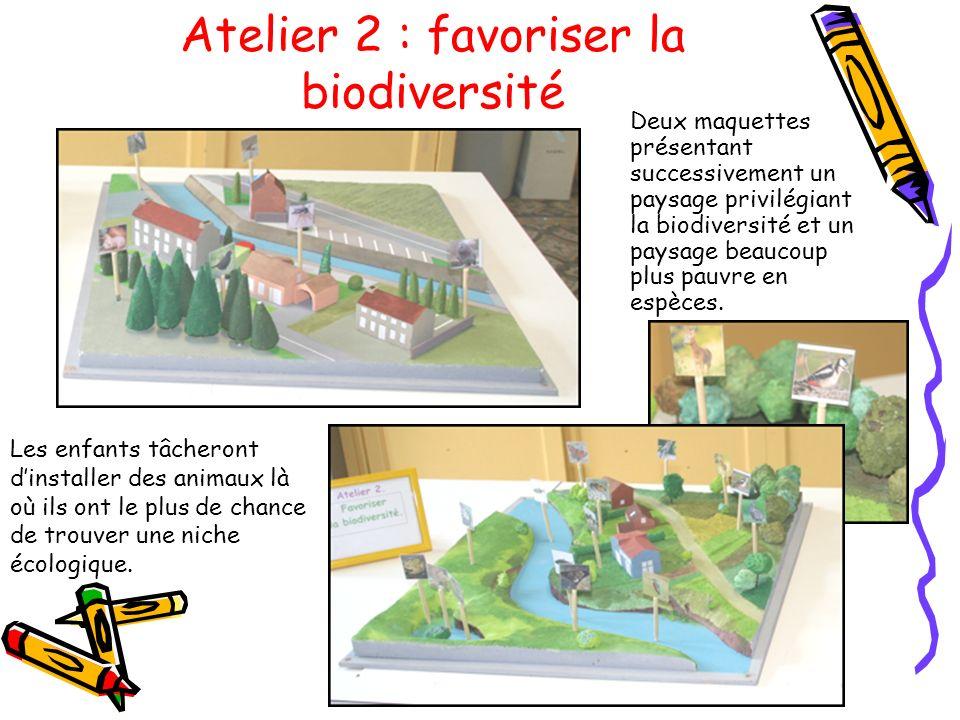Atelier 2 : favoriser la biodiversité Deux maquettes présentant successivement un paysage privilégiant la biodiversité et un paysage beaucoup plus pau