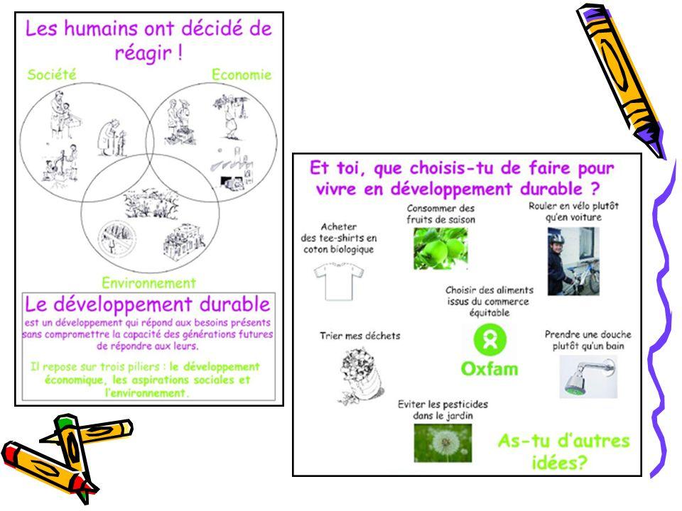 Atelier 6 : le magasin de DD Il sagit daider Hercule Mulot à choisir des articles en accord avec le développement durable en suivant une liste de courses.