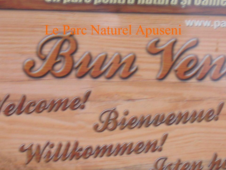 Le Parc Naturel Apuseni