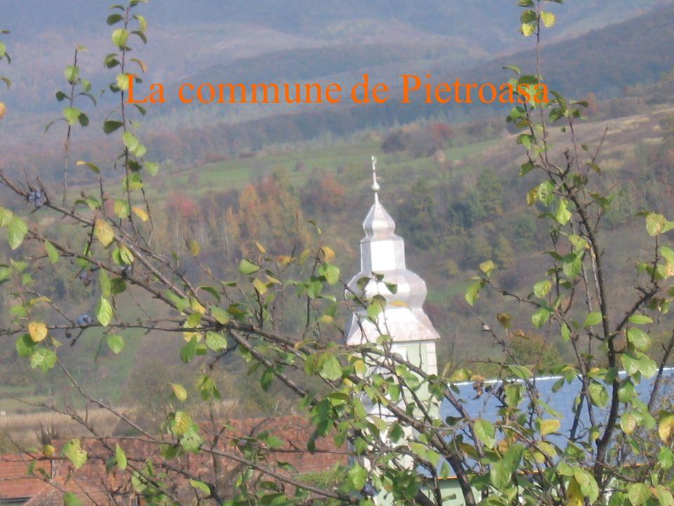La commune de Pietroasa
