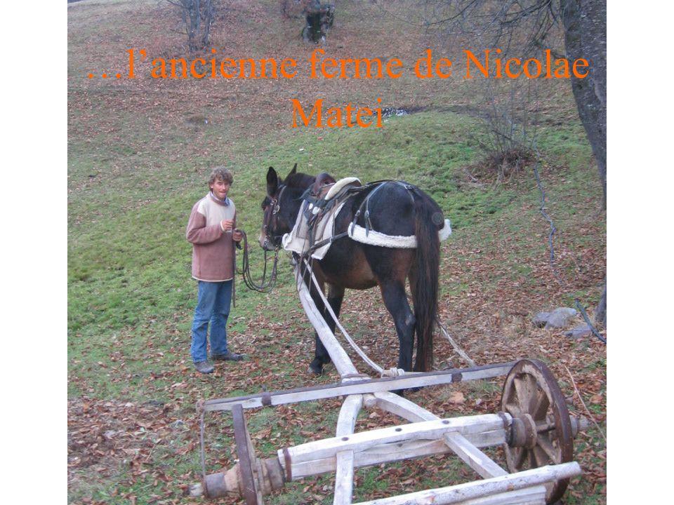 …lancienne ferme de Nicolae Matei