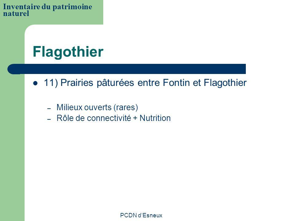 Flagothier 11) Prairies pâturées entre Fontin et Flagothier – Milieux ouverts (rares) – Rôle de connectivité + Nutrition Inventaire du patrimoine natu