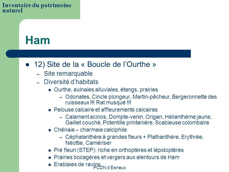 Ham 12) Site de la « Boucle de lOurthe » – Site remarquable – Diversité dhabitats Ourthe, aulnaies alluviales, étangs, prairies – Odonates, Cincle plo