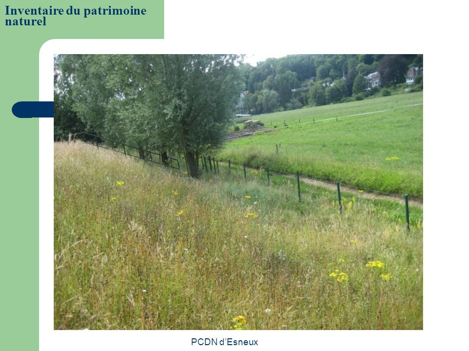 Inventaire du patrimoine naturel PCDN dEsneux