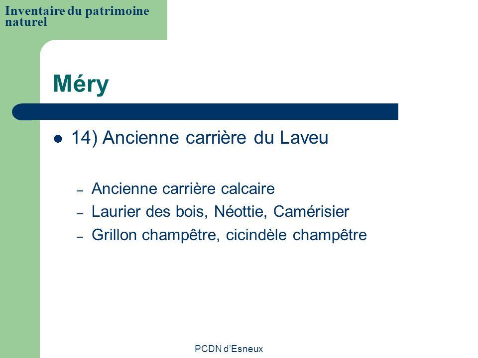 Méry 14) Ancienne carrière du Laveu – Ancienne carrière calcaire – Laurier des bois, Néottie, Camérisier – Grillon champêtre, cicindèle champêtre Inve