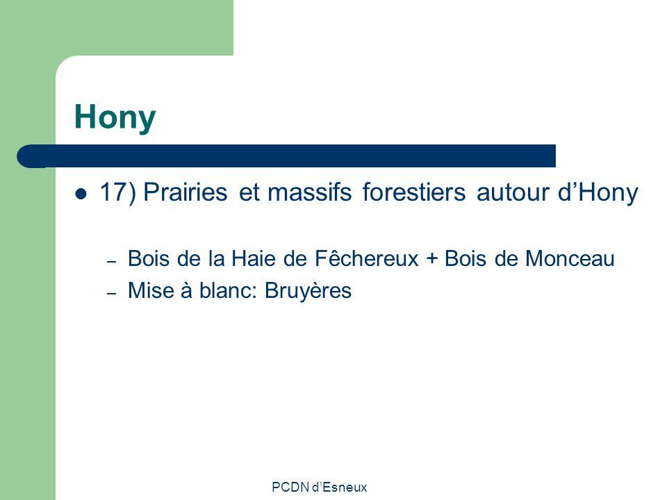 Hony 17) Prairies et massifs forestiers autour dHony – Bois de la Haie de Fêchereux + Bois de Monceau – Mise à blanc: Bruyères PCDN dEsneux