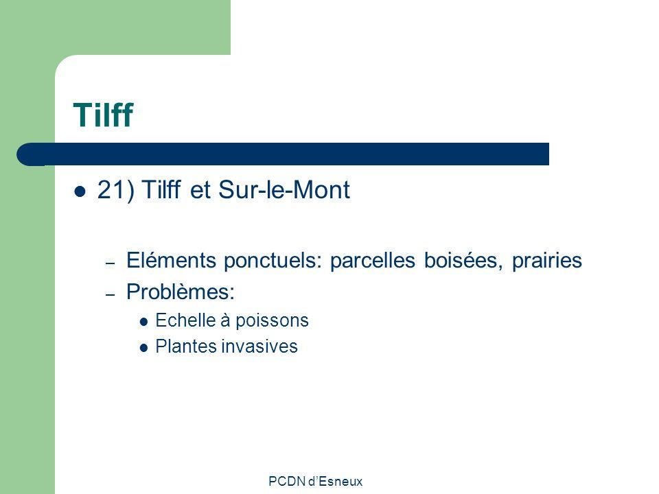 Tilff 21) Tilff et Sur-le-Mont – Eléments ponctuels: parcelles boisées, prairies – Problèmes: Echelle à poissons Plantes invasives PCDN dEsneux