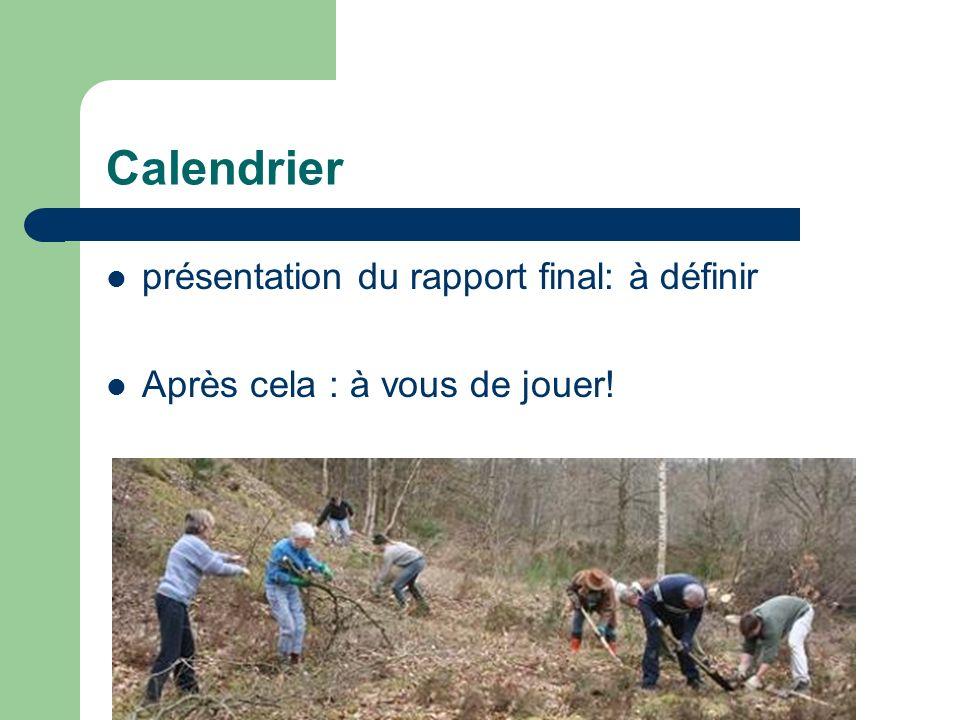 Calendrier présentation du rapport final: à définir Après cela : à vous de jouer!
