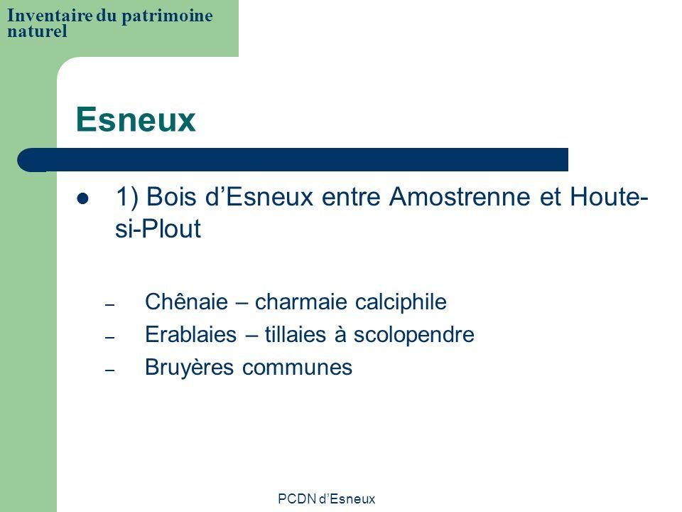Esneux 1) Bois dEsneux entre Amostrenne et Houte- si-Plout – Chênaie – charmaie calciphile – Erablaies – tillaies à scolopendre – Bruyères communes In