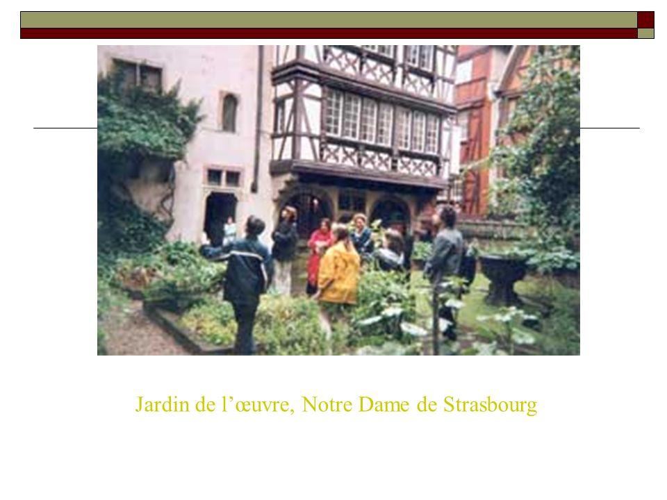 Jardin de lœuvre, Notre Dame de Strasbourg