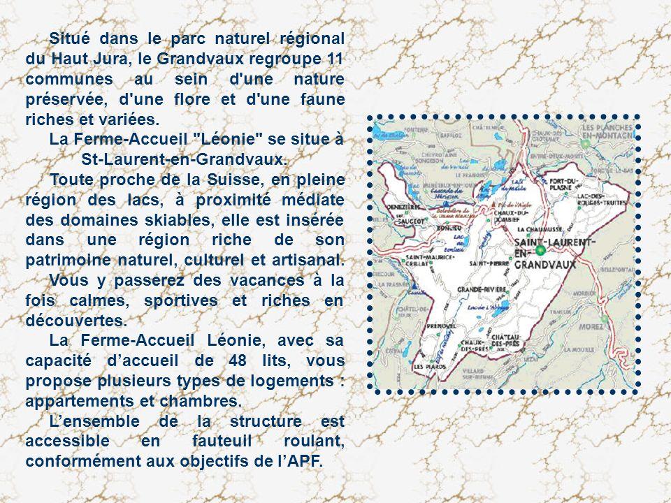 Situé dans le parc naturel régional du Haut Jura, le Grandvaux regroupe 11 communes au sein d'une nature préservée, d'une flore et d'une faune riches