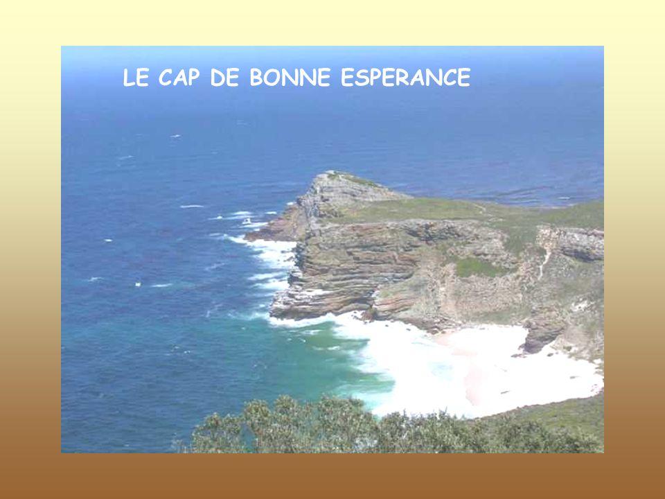 LE CAP DE BONNE ESPERANCE