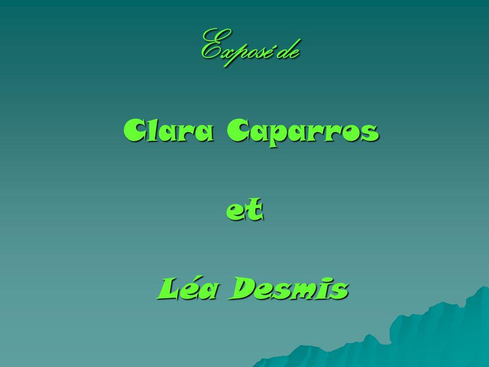 Exposé de Clara Caparros Clara Caparroset Léa Desmis Léa Desmis