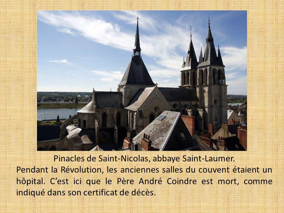 Pinacles de Saint-Nicolas, abbaye Saint-Laumer. Pendant la Révolution, les anciennes salles du couvent étaient un hôpital. Cest ici que le Père André
