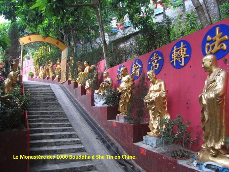 Tombes suspendues à Sagada, Philippines