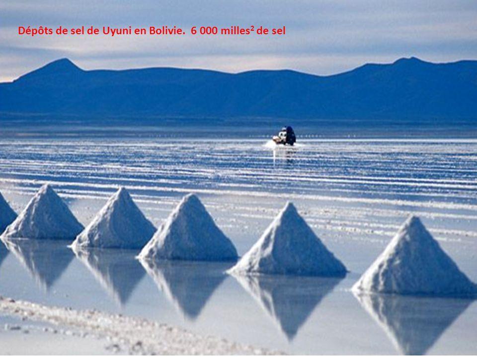 Dépôts de sel de Uyuni en Bolivie. 6 000 milles 2 de sel