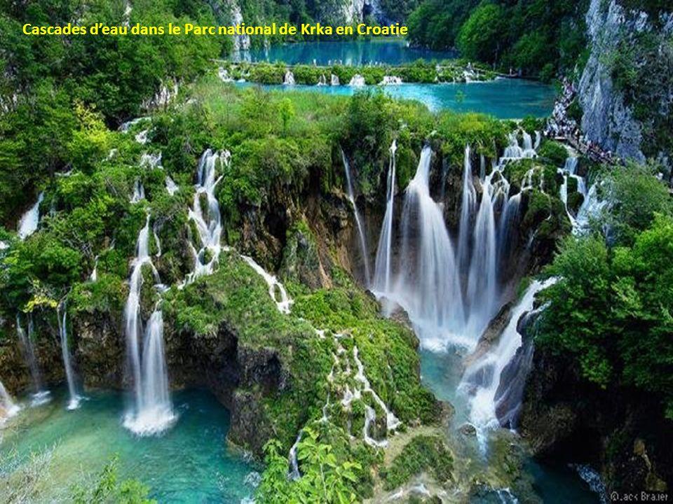 Cascades deau dans le Parc national de Krka en Croatie