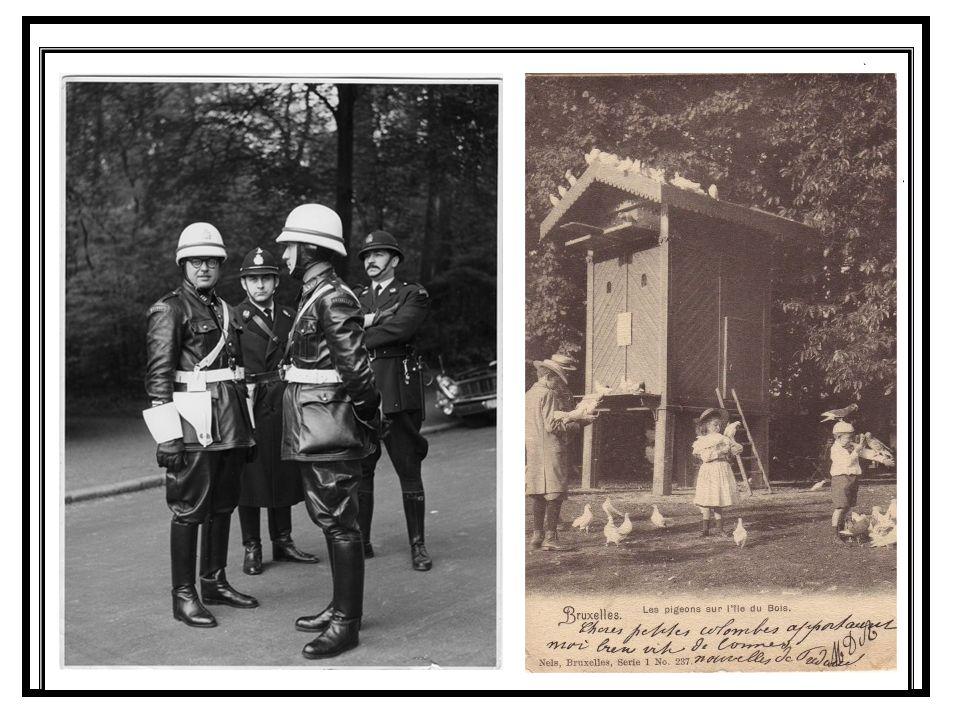 Lavenue Franklin Roosevelt et lUniversité libre de Bruxelles