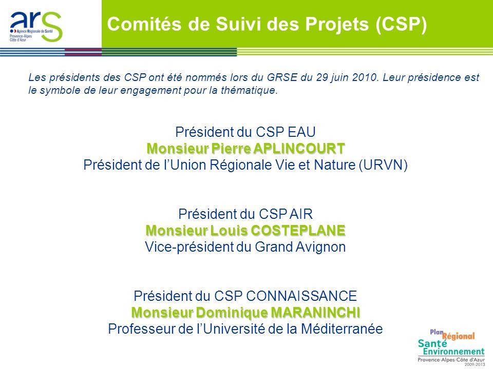 Président du CSP EAU Monsieur Pierre APLINCOURT Président de lUnion Régionale Vie et Nature (URVN) Président du CSP AIR Monsieur Louis COSTEPLANE Vice