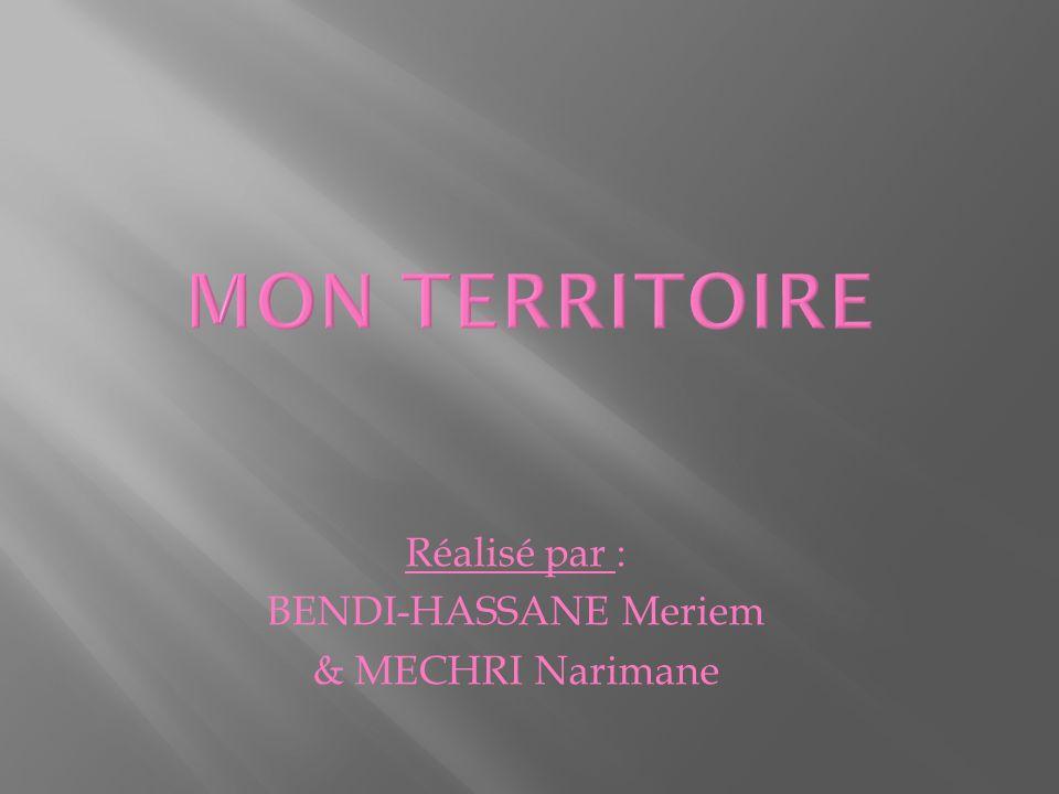 MON TERRITOIRE Réalisé par : BENDI-HASSANE Meriem & MECHRI Narimane