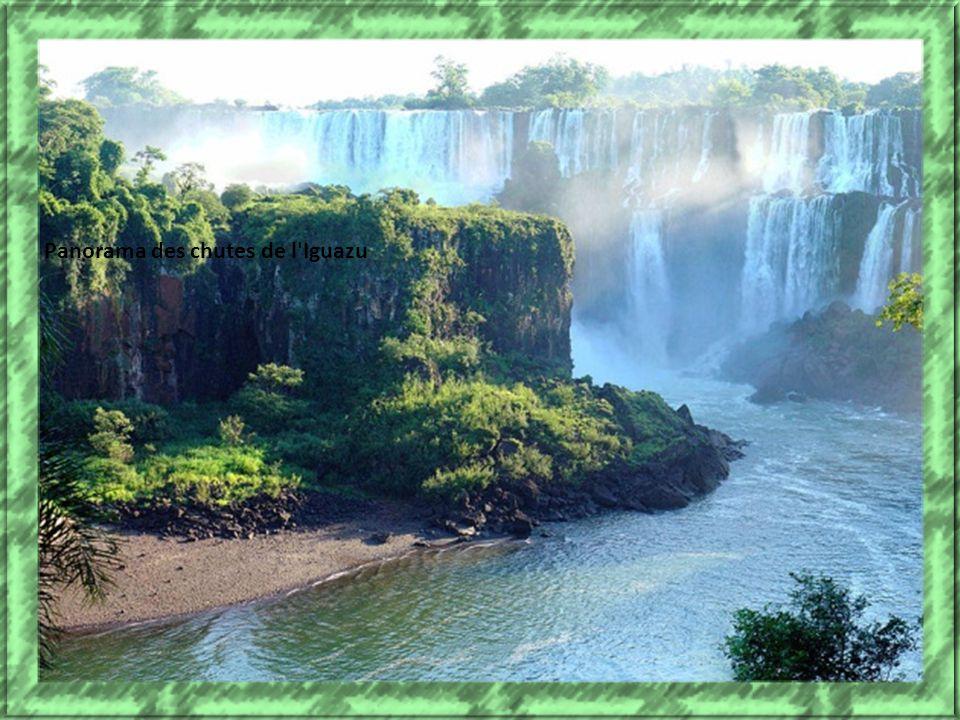 chutes d'Iguazu, situées au beau milieu de la forêt tropicale, à la frontière entre le Brésil et l'Argentine