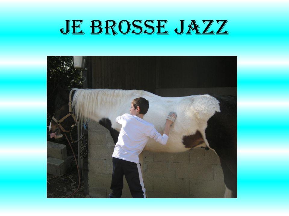 Je brosse jazz