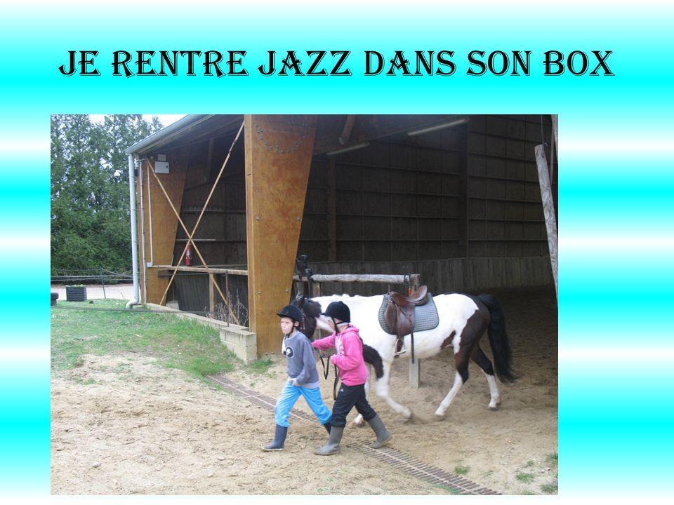 Je rentre Jazz DANS son box