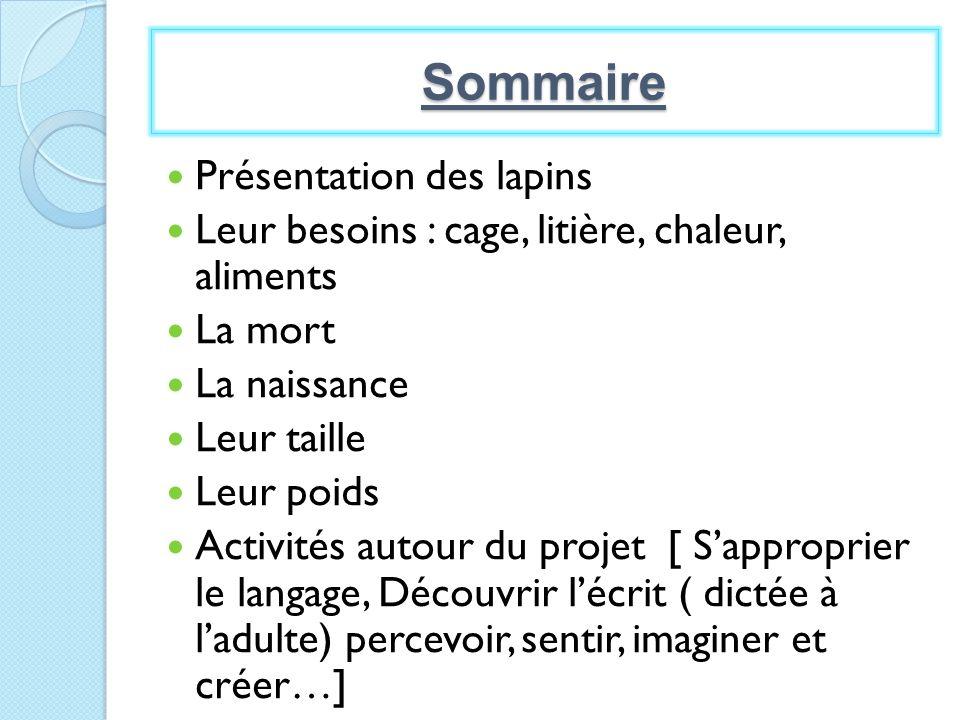 Le 5 avril, Lapinou pèse 10 gros légos, 2 moyens et 1 petit.