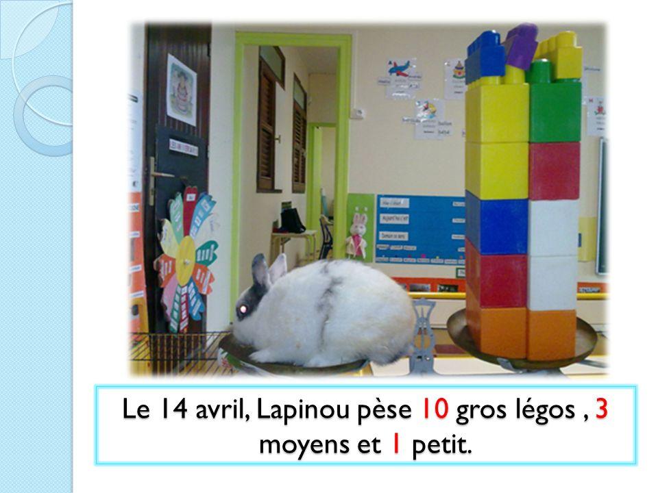 Le 14 avril, Lapinou pèse 10 gros légos, 3 moyens et 1 petit.