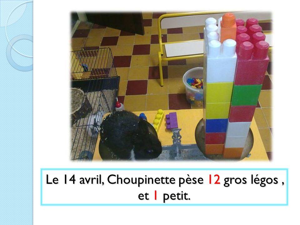 Le 14 avril, Choupinette pèse 12 gros légos, et 1 petit.