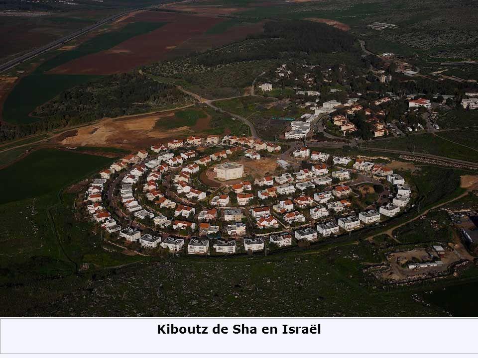 Kiboutz de Sha en Israël