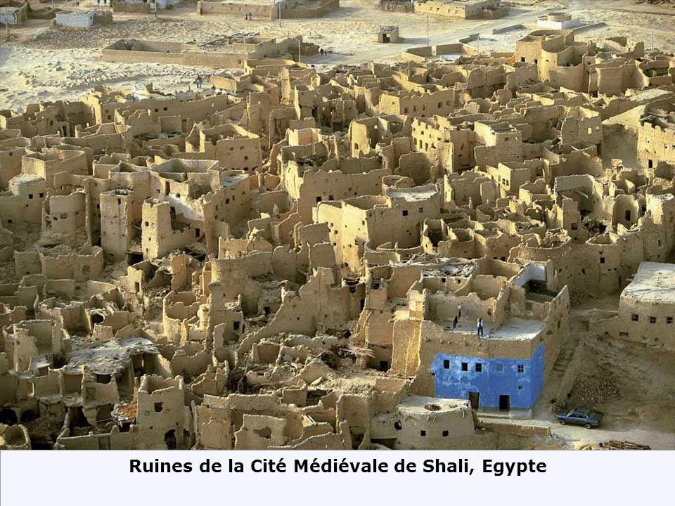 Maisons en pignon dans le Delta Mit Gahmr, Egypte